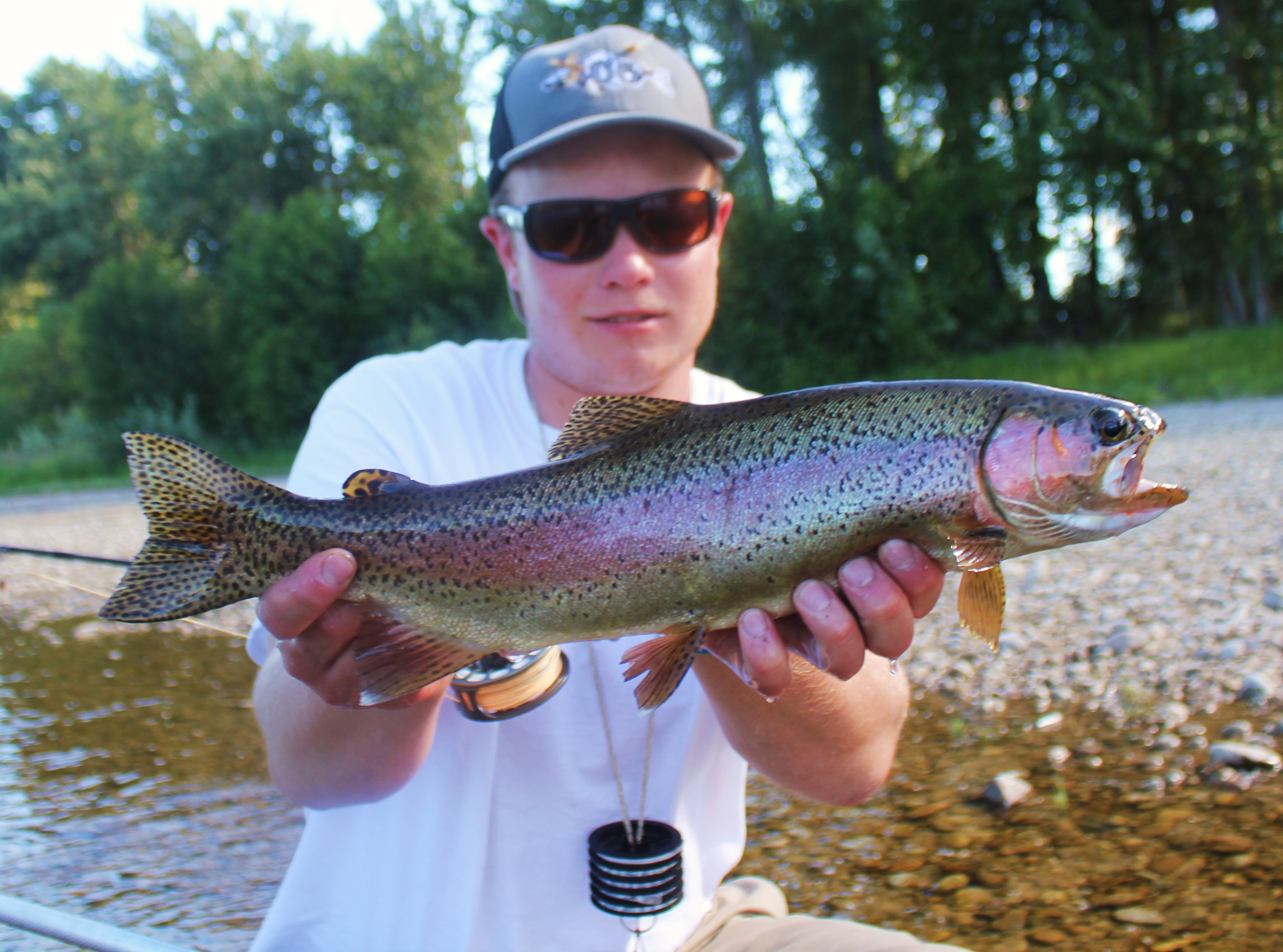 Guided Fly Fishing in Missoula